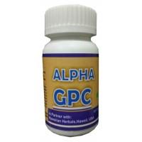 Hawaiian Herbal Alpha Gpc Capsule, Hawaii, Usa - 60 Capsules