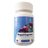Hawaiian Herbal, Hawaii, Usa - Nopal Capsules - Controls Blood Sugar & Lipid Levels
