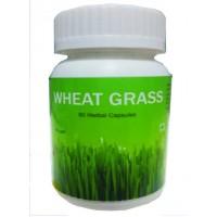Hawaiian Herbal, Hawaii, Usa - Wheat Grass Capsules