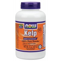 Now Foods Norwegian KELP Powder 8 oz (227 gm) - Thyroid, Natural Iodine