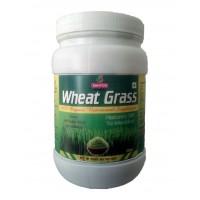 Sahyog Herbals WHEATGRASS Powder 100g