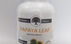 Papaya leaves for overall health