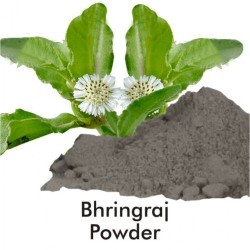 Benefits of Bhringaraj