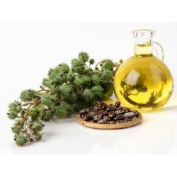 20 Amazing Benefits of Castor Oil
