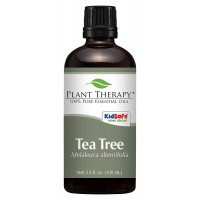 Plant Therapy Tea Tree (Melaleuca) Essential Oil. 100% Pure, Undiluted, Therapeutic Grade. 100 mL (3.3 Ounce).