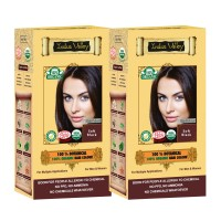 Indus Valley 100% Organic Botanical Semi-permanent Soft Black (Twin Pack) Hair Color
