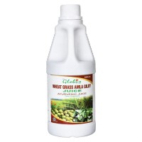 Globus Giloy Amla Wheat Grass Juice