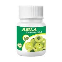 Deep Ayurveda Amla Herbal Capsule - 30 Capsules