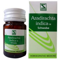 Willmar Schwabe India Azadirachta Indica 1X Tablets (Neem) (20g) : Used as Blood Purifier, Detoxifier, Helps in Acne, Skin eruptions