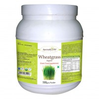 Ayurvedic Life Wheatgrass 500gms Powder