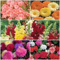 Biocarve All Garden Flower kit- 5 Packets