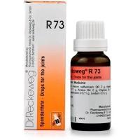 Dr. Reckeweg R73 (Spondarthrin) Drops (22ml)