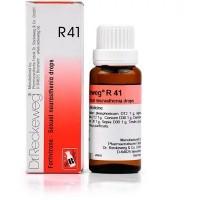 Dr. Reckeweg R41 (Fortivirone) Drops (22ml)