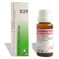 Dr. Reckeweg R29 (Theridon) (22ml)