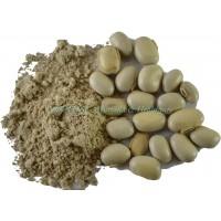 Dark Forest Kaucha(Velvet Bean) Powder - 200g