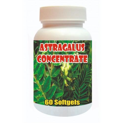 Tonga Herbs Astragalus Concentrate Softgels - 60 Softgels