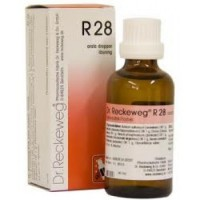 Dr. Reckeweg R28 Dysmenorrhea And Amenorrhea Drops 22ml