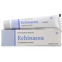 Lords Echinacea Ointment (25g) : For Boils, Ulcers, wound pain, After insect bites