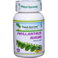 Planet Ayurveda's Phyllanthus Niruri Capsules (60)