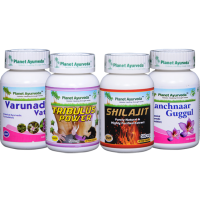 Planet Ayurveda PROSTATE CARE PACK